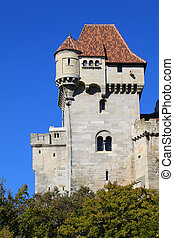 Castel - Photo of medieval castle in Austria
