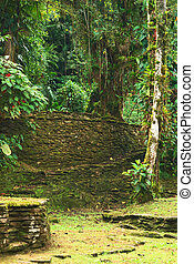 Stairs in Ciudad Perdida, Colombia - Old stone stairs and...