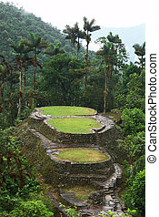 The main ceremonial terraces in Ciudad Perdida Colombia -...