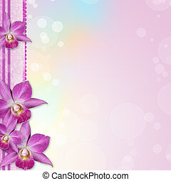 Beautiful Orchid border