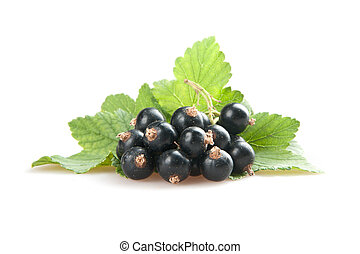 blackcurrant isolated on white