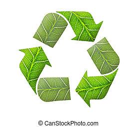 Recycle logo, green concept