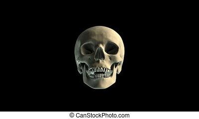Skull breaking window