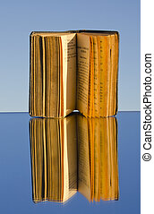 old book on mirror and reflection
