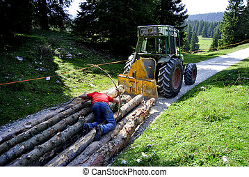 laden tractor cut logs on the road