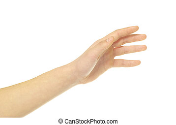 hand - human hand take over on white white background