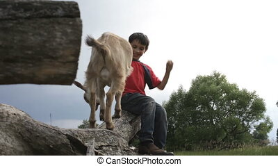 The boy and goat