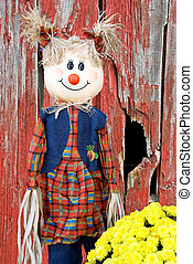 girl scarecrow - Girl scarecrow with fall mums and weathered...