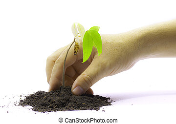 To plant tree for our earth and environment
