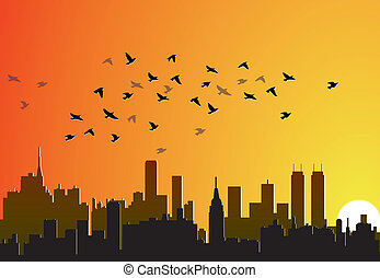 city background with flying birds
