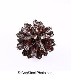 Silver conifer cone