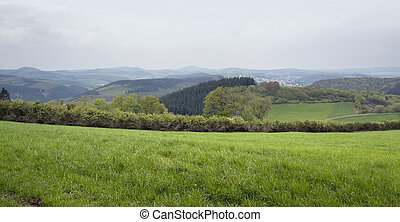Eifel scenery - idyllic stormy scenery in the Vulkan Eifel,...