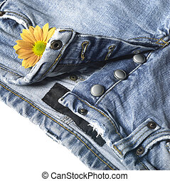 blue jeans - studio shot of a pair of blue jeans and flower...