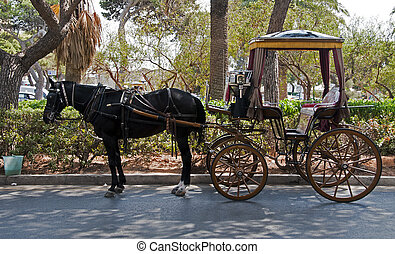 chaise and horse - horse and chaise as a taxi transport on...