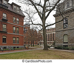 Harvard Yard in Cambridge - the Harvard Yard in Cambridge...