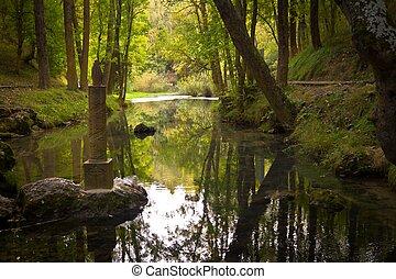 Ebro River Source