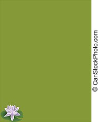 water lily - illustration of water lily on green background