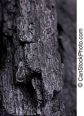 Charcoal texture - Macro view of charcoal texture