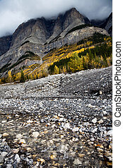 rocky mountain, 8km North of Saskatchewan Crossing Yoho...