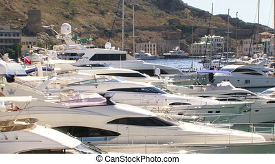 Boats in the docks - Beautiful white yachts stand on the...