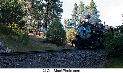 Iron Horse - Steam locomotive engine This train is in daily...