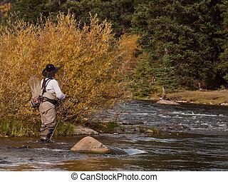 Fly Fisherman - Fly fisherman at Taylor River, Colorado.