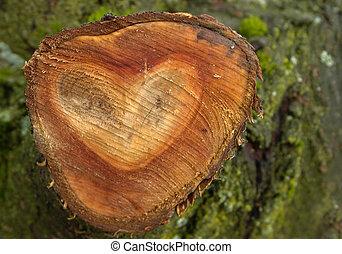 madeira, Coração, FORMA