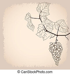 background with grapevine in line-art style
