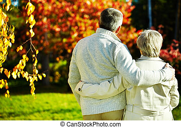 Romance - Rear view of aged man and woman taking a walk in...