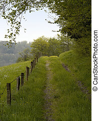 overgrown field path - idyllic scenery showing a rural field...