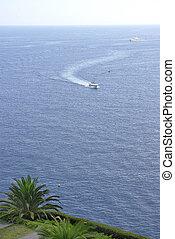 Monaco harbor view