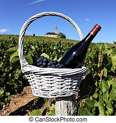 religious wine - bottle of wine and grappes in basket in...