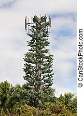 Fake Cellular Antenna Pine Tree. - A nationwide trend of...