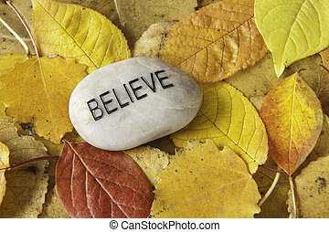 Believe Rock with Fall Leaves - Believe message rock with...