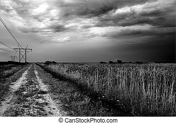 Powerline Road - Image of a powerline access road in the...