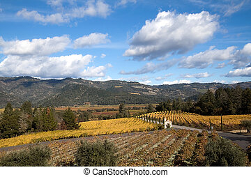 Wine Country - The hillsides of Napa Valley wine country