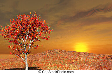 autunno, paesaggio