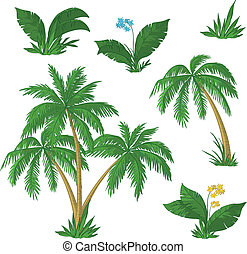 Palm trees, flowers and grass - Palm trees, flowers and...
