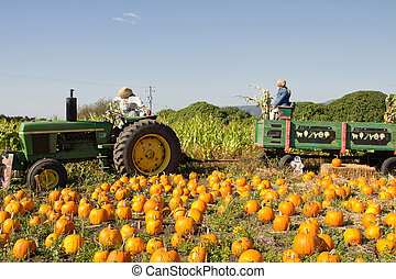 Pumpkin Patch with Tractor and Trailer - Tractor and Trailer...