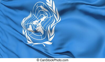 White United Nations Symbol On Blue