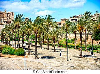Cathedral   La seu. Palma de Mallorca. mediterranean