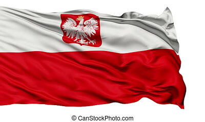 Flag of Poland - Waving Flag of Poland with and...