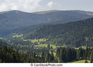 aerial Black Forest scenery - aerial view of a idyllic...