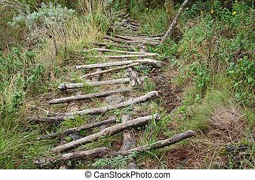Path to the top of Muhavara Vulcano
