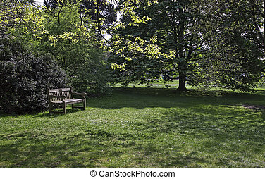 Park landscape.   - Landscape in countryside in England.