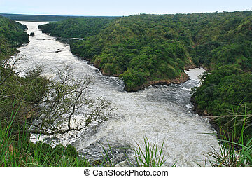 River Nile around Murchison Falls - high angle view around...