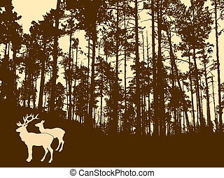 silhouette of the deers in thick w