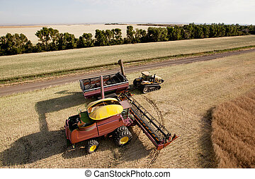 Harvester with Grain Cart - Large combine unloading seed...