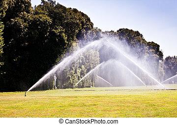 Luxury garden: irrigation
