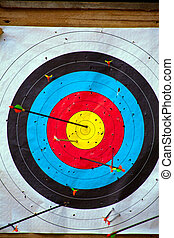 Shooting target - Shooting wheel target with arrows